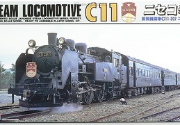 C-11 Type Locomotive ARII 056028 50th